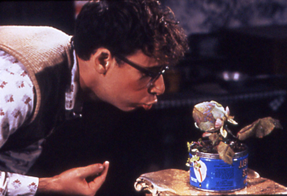 Seymour (Rick Moranis) and Audrey II (Levi Stubbs) in Little Shop of Horrors