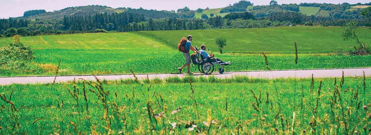 I'll Push You: Share the Extraordinary Journey of Two Friends, 500 Miles, and a Wheelchair