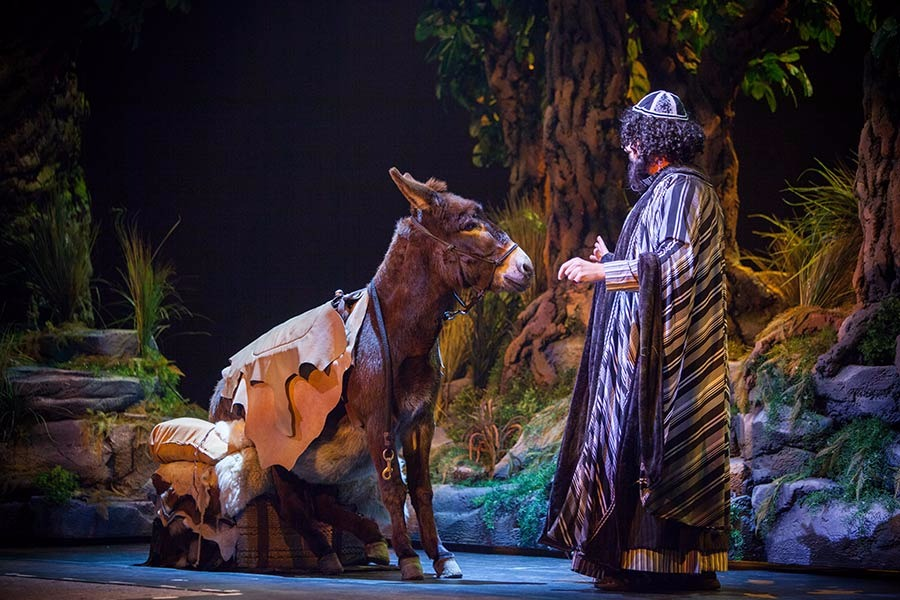 Jonah encounters a stubborn donkey on his travels in  JONAH: On Stage!