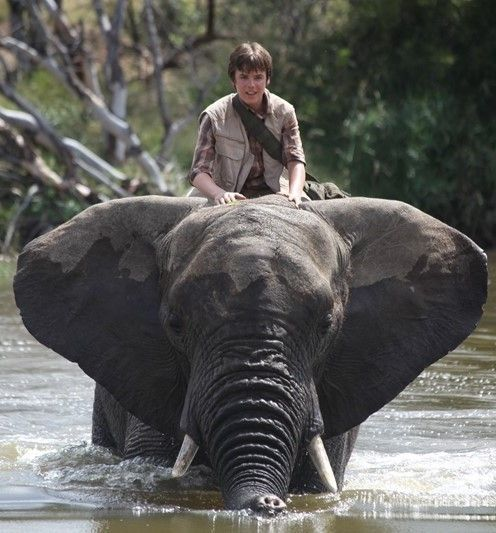 Save the Elephant Day -- Elizabeth Hurley stars in new family film highlighting world poaching crisis