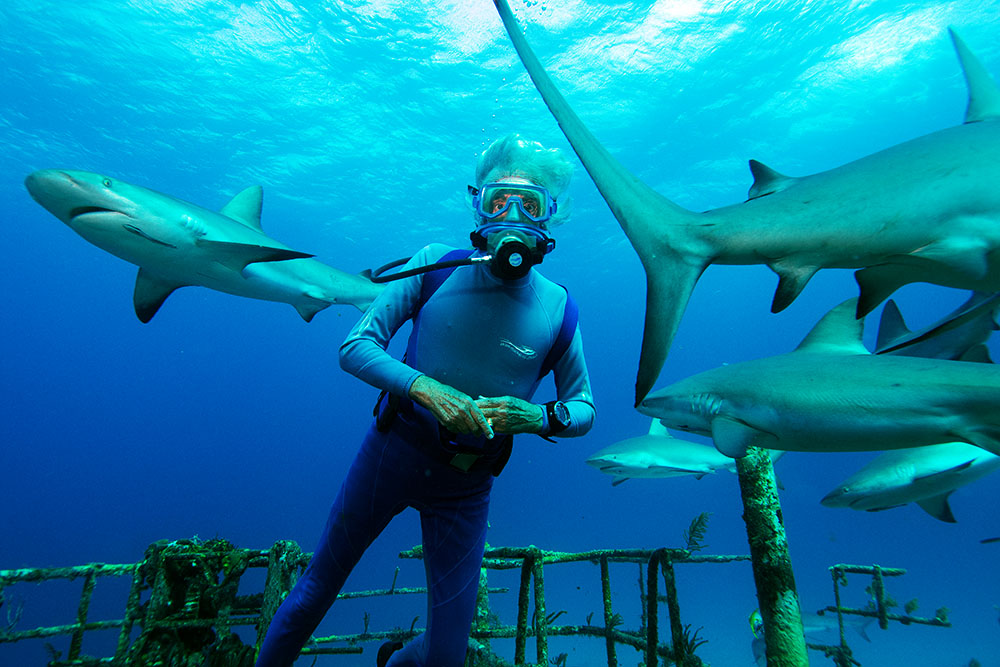Wonders of the Sea 3D: An Immersive Family Experience with Jean-Michel Cousteau